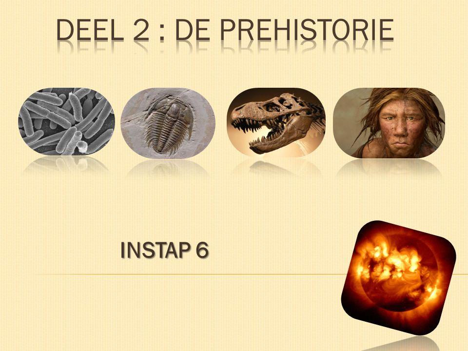 INSTAP 6