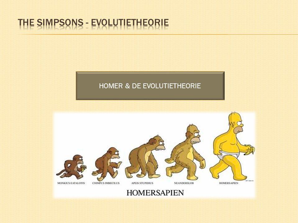 HOMER & DE EVOLUTIETHEORIE