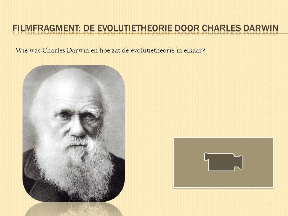 Wie was Charles Darwin en hoe zat de evolutietheorie in elkaar?