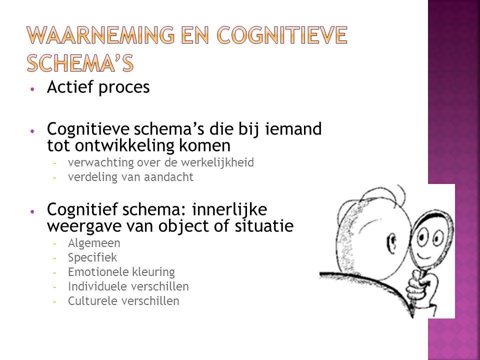 Actief proces Cognitieve schema's die bij iemand tot ontwikkeling komen – verwachting over de werkelijkheid – verdeling van aandacht Cognitief schema: innerlijke weergave van object of situatie – Algemeen – Specifiek – Emotionele kleuring – Individuele verschillen – Culturele verschillen
