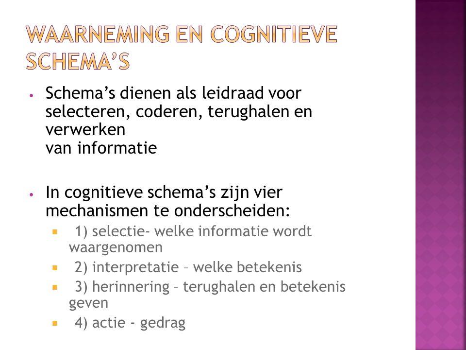 Schema's dienen als leidraad voor selecteren, coderen, terughalen en verwerken van informatie In cognitieve schema's zijn vier mechanismen te onderscheiden:  1) selectie- welke informatie wordt waargenomen  2) interpretatie – welke betekenis  3) herinnering – terughalen en betekenis geven  4) actie - gedrag