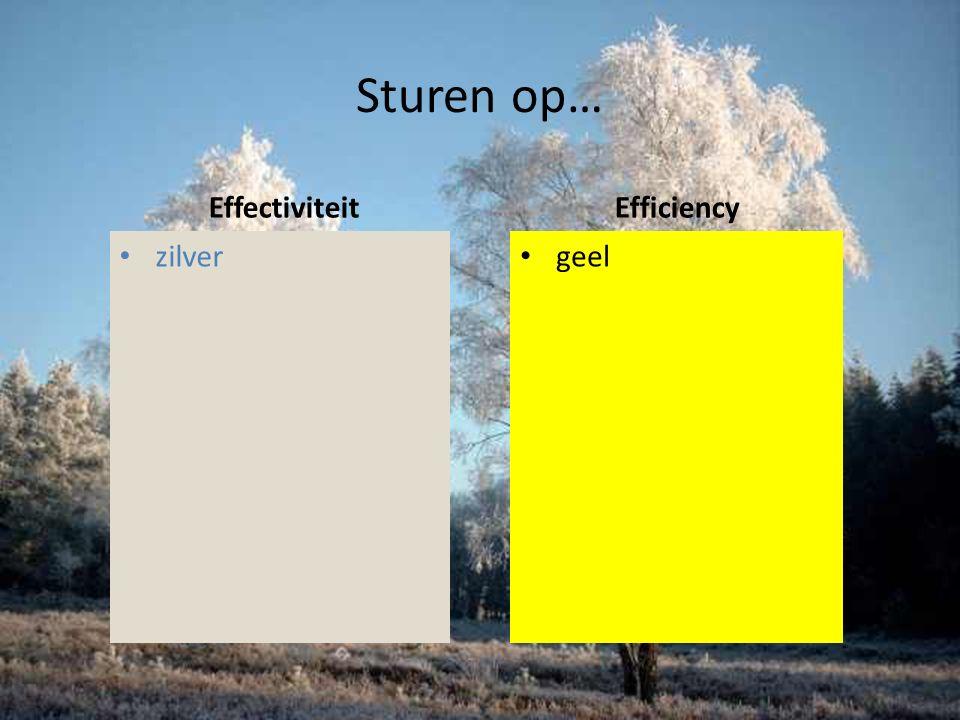 Sturen op… Efficiency geel Effectiviteit zilver