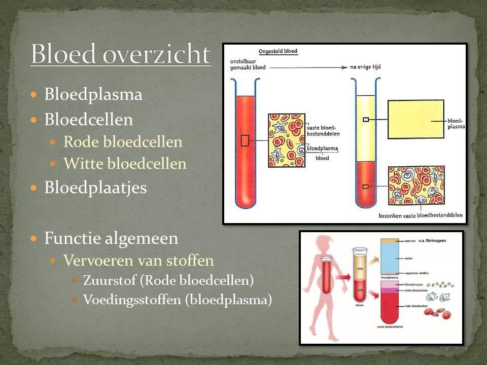 Bloedplasma Bloedcellen Rode bloedcellen Witte bloedcellen Bloedplaatjes Functie algemeen Vervoeren van stoffen Zuurstof (Rode bloedcellen) Voedingsst