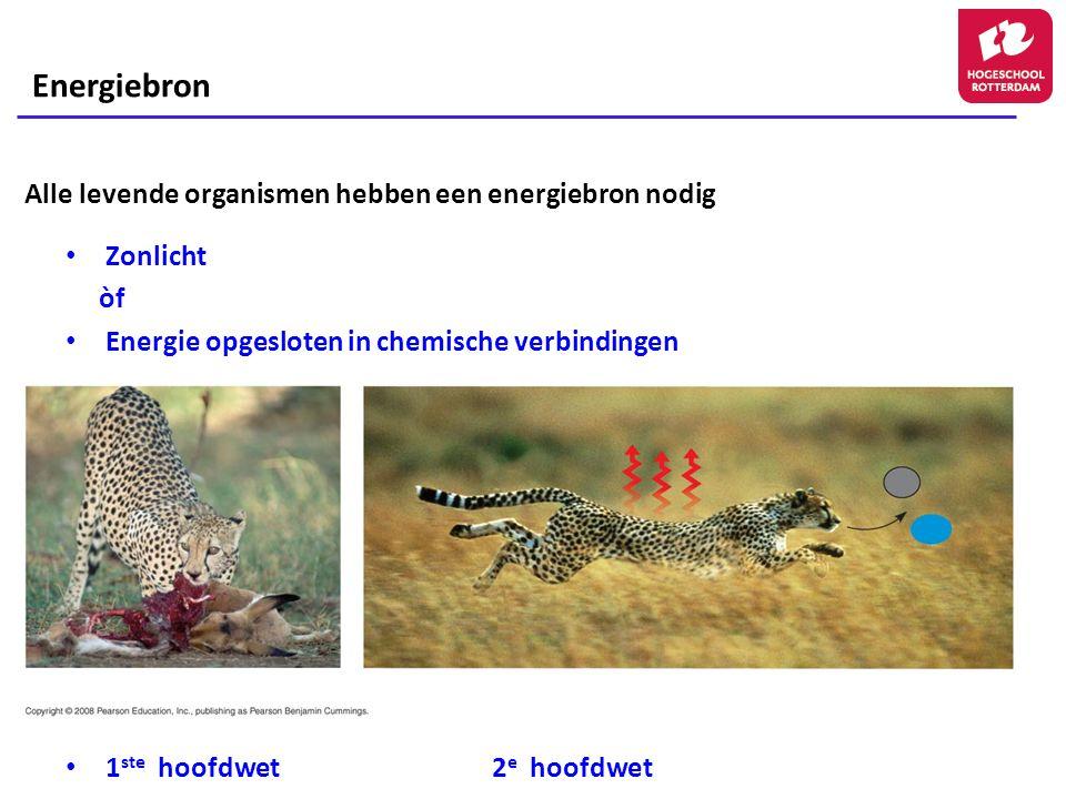 Alle levende organismen hebben een energiebron nodig Zonlicht òf Energie opgesloten in chemische verbindingen 1 ste hoofdwet2 e hoofdwet Energiebron