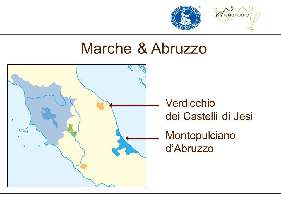 Marche & Abruzzo Verdicchio dei Castelli di Jesi Montepulciano d'Abruzzo