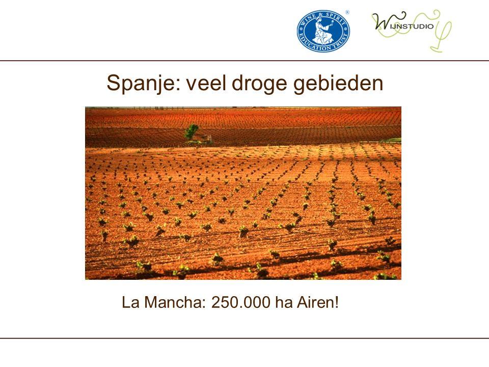 Spanje: veel droge gebieden La Mancha: 250.000 ha Airen!