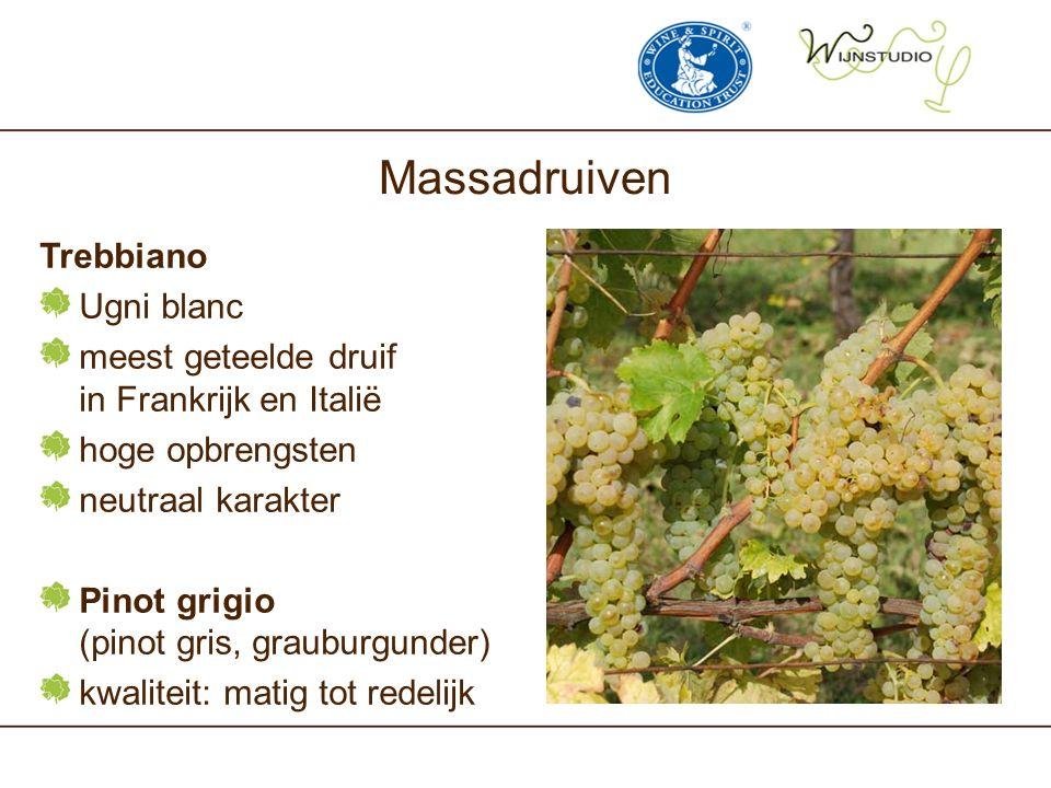Massadruiven Trebbiano Ugni blanc meest geteelde druif in Frankrijk en Italië hoge opbrengsten neutraal karakter Pinot grigio (pinot gris, grauburgunder) kwaliteit: matig tot redelijk
