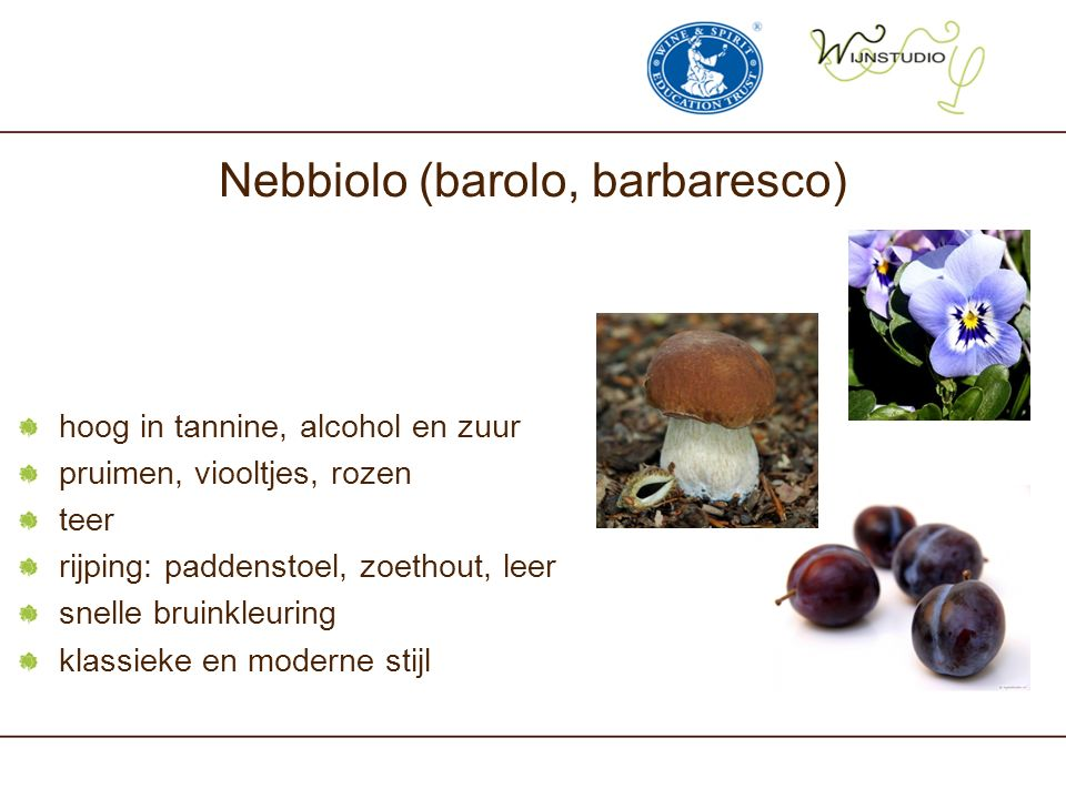 Nebbiolo (barolo, barbaresco) hoog in tannine, alcohol en zuur pruimen, viooltjes, rozen teer rijping: paddenstoel, zoethout, leer snelle bruinkleuring klassieke en moderne stijl