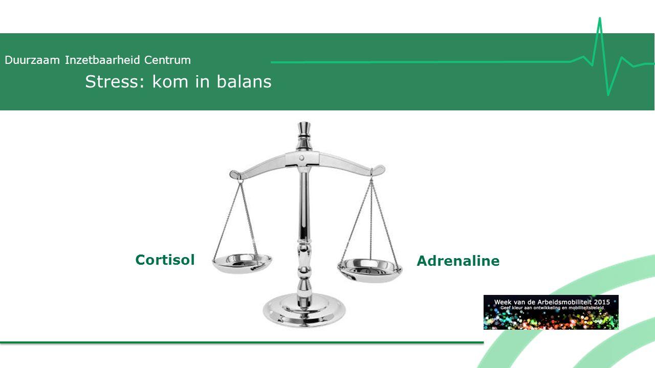 Duurzaam Inzetbaarheid Centrum Cortisol Adrenaline Stress: kom in balans