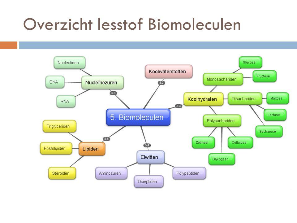 Overzicht lesstof Biomoleculen