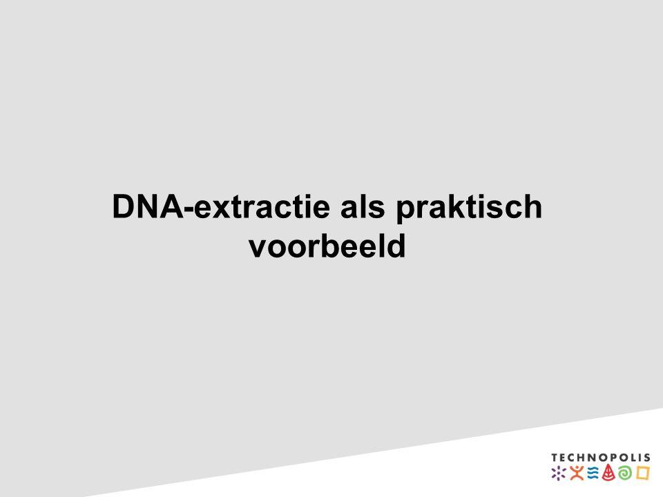 DNA-extractie als praktisch voorbeeld