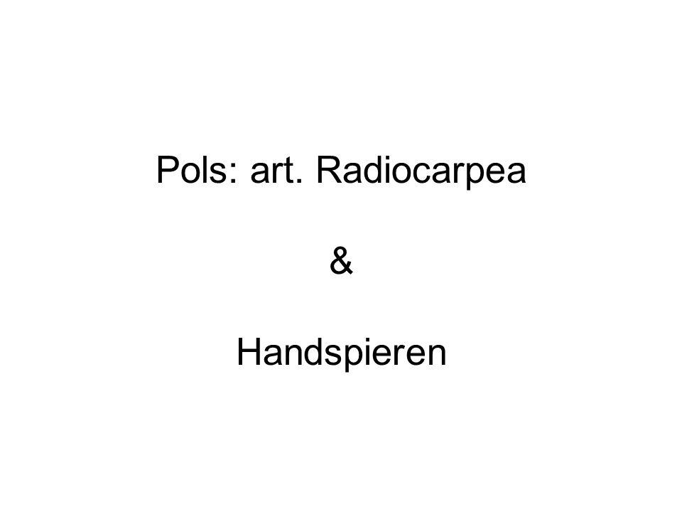 Pols: art. Radiocarpea & Handspieren