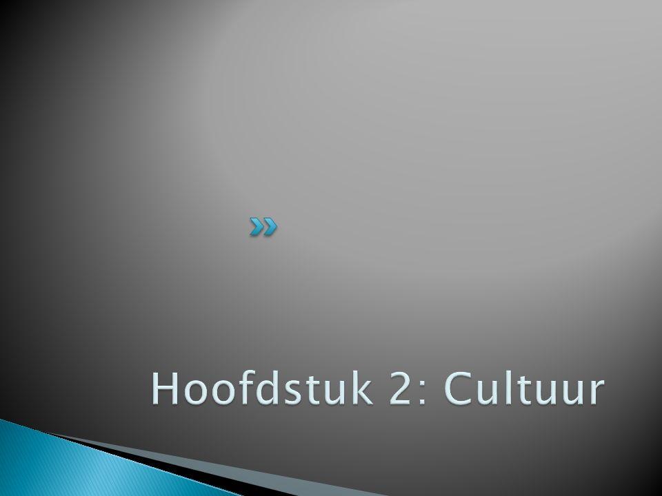 Schrijf voor jezelf het antwoord op de volgende vragen op: Wat versta jij onder cultuur.