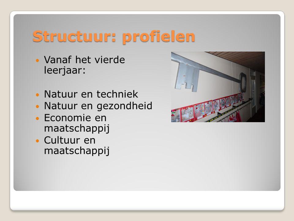 Structuur: profielen Vanaf het vierde leerjaar: Natuur en techniek Natuur en gezondheid Economie en maatschappij Cultuur en maatschappij