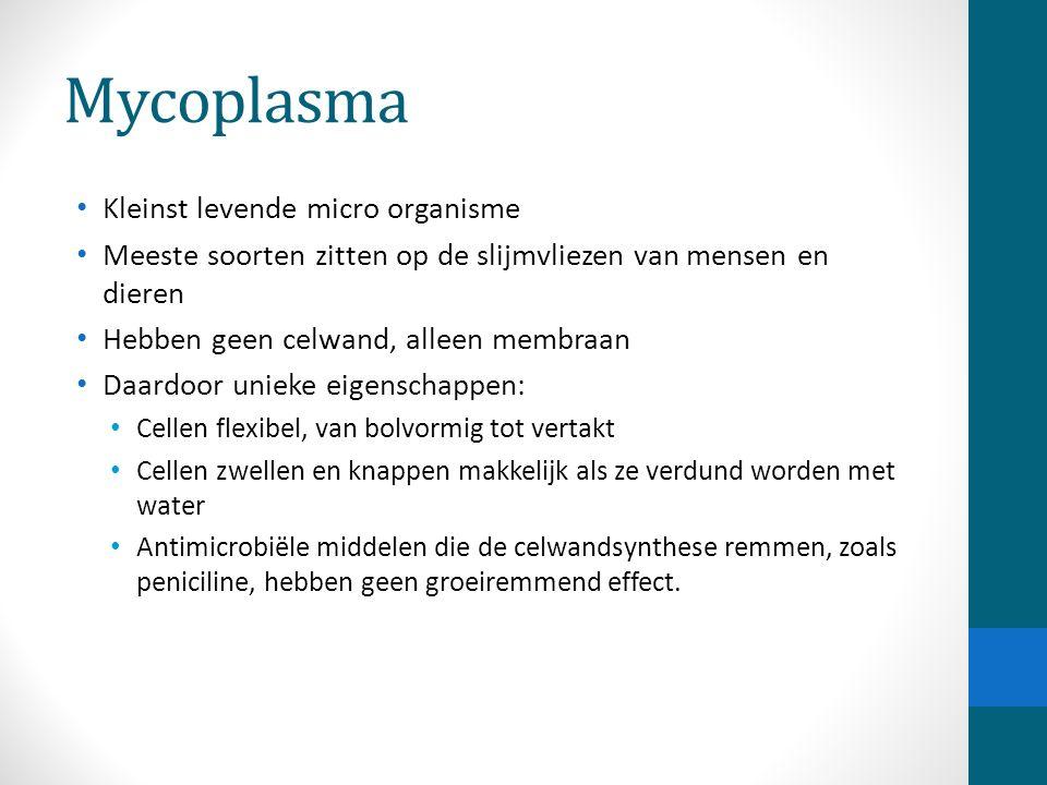 Mycoplasma Kleinst levende micro organisme Meeste soorten zitten op de slijmvliezen van mensen en dieren Hebben geen celwand, alleen membraan Daardoor