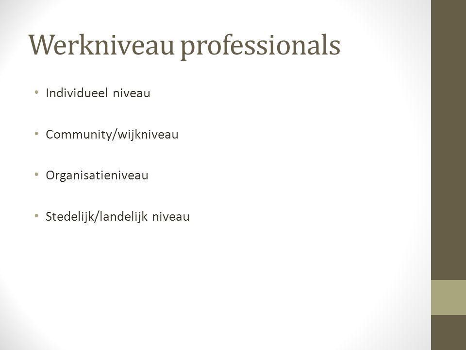 Werkniveau professionals Individueel niveau Community/wijkniveau Organisatieniveau Stedelijk/landelijk niveau