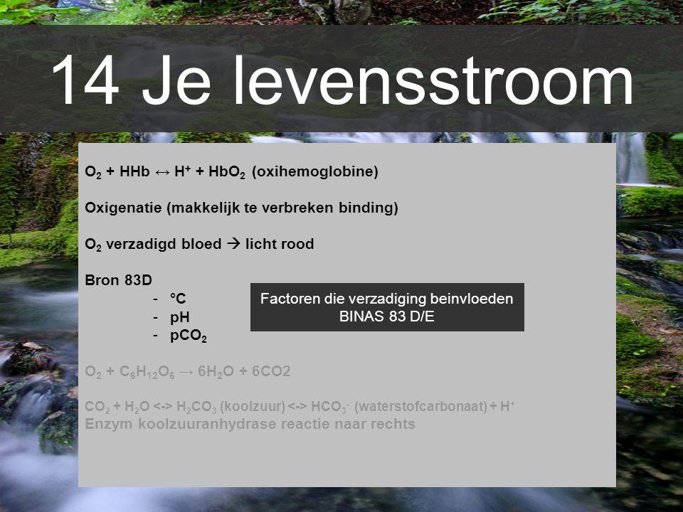 14 Je levensstroom O 2 + HHb ↔ H + + HbO 2 (oxihemoglobine) Oxigenatie (makkelijk te verbreken binding) O 2 verzadigd bloed  licht rood Bron 83D -°C