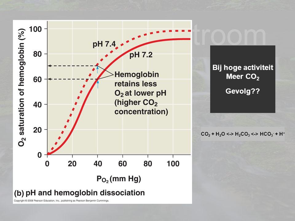 14 Je levenstroom Bij hoge activiteit Meer CO 2 Gevolg?? CO 2 + H 2 O H 2 CO 3 HCO 3 - + H +
