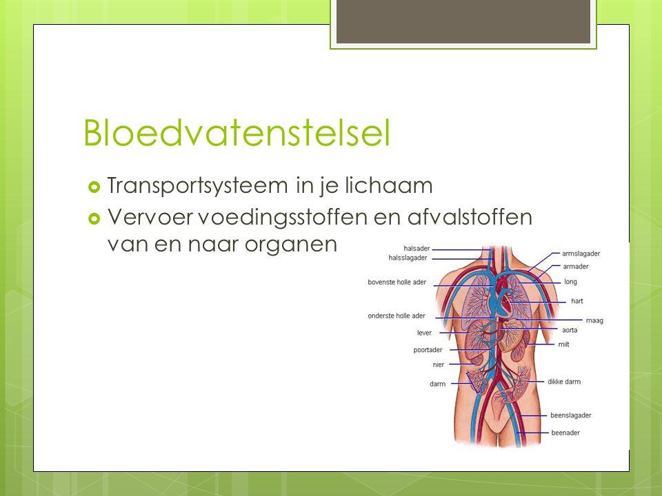 Bloedvatenstelsel  Transportsysteem in je lichaam  Vervoer voedingsstoffen en afvalstoffen van en naar organen