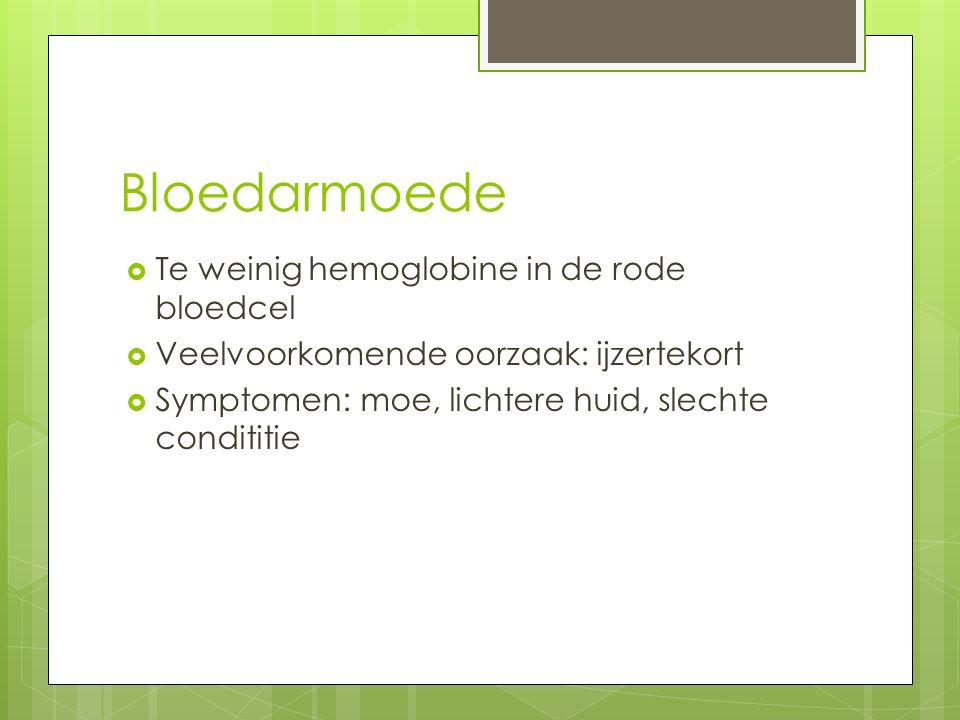 Bloedarmoede  Te weinig hemoglobine in de rode bloedcel  Veelvoorkomende oorzaak: ijzertekort  Symptomen: moe, lichtere huid, slechte condititie