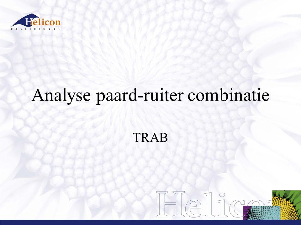 Analyse paard-ruiter combinatie TRAB
