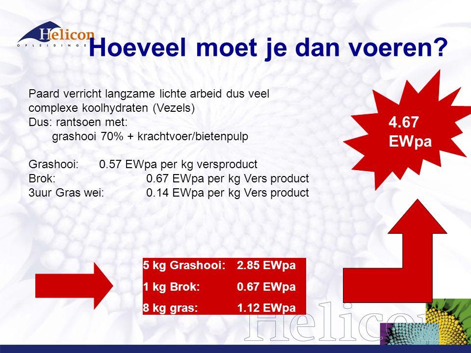 Paard verricht langzame lichte arbeid dus veel complexe koolhydraten (Vezels) Dus: rantsoen met: grashooi 70% + krachtvoer/bietenpulp Grashooi: 0.57 EWpa per kg versproduct Brok: 0.67 EWpa per kg Vers product 3uur Gras wei:0.14 EWpa per kg Vers product 4.67 EWpa 5 kg Grashooi: 2.85 EWpa 1 kg Brok:0.67 EWpa 8 kg gras:1.12 EWpa Hoeveel moet je dan voeren?