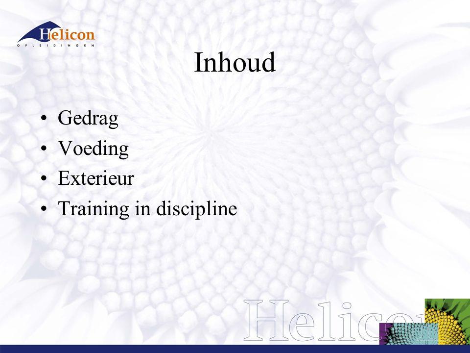 Gedrag Beschrijf het normale gedrag van: 1.Paard 2.Ruiter Hoe kun je gedrag beschrijven.