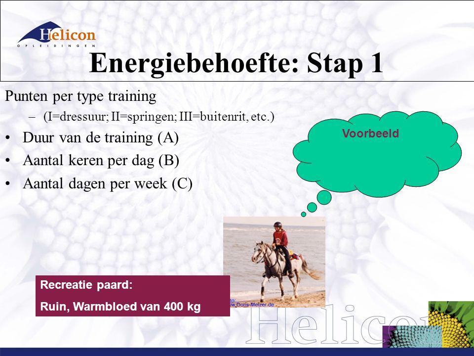 Energiebehoefte: Stap 1 Punten per type training –(I=dressuur; II=springen; III=buitenrit, etc.) Duur van de training (A) Aantal keren per dag (B) Aantal dagen per week (C) Recreatie paard: Ruin, Warmbloed van 400 kg Voorbeeld