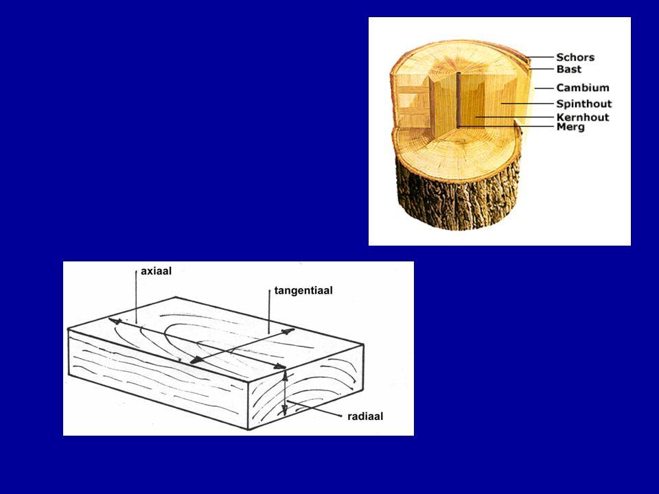 Hout anisotropie Bestaat uit relatief lange vezels, met geringe dikte Vezels relatief sterk, verbindingen tussen de vezels minder sterk: –Hout in lengterichting sterk –In dwarsrichting minder