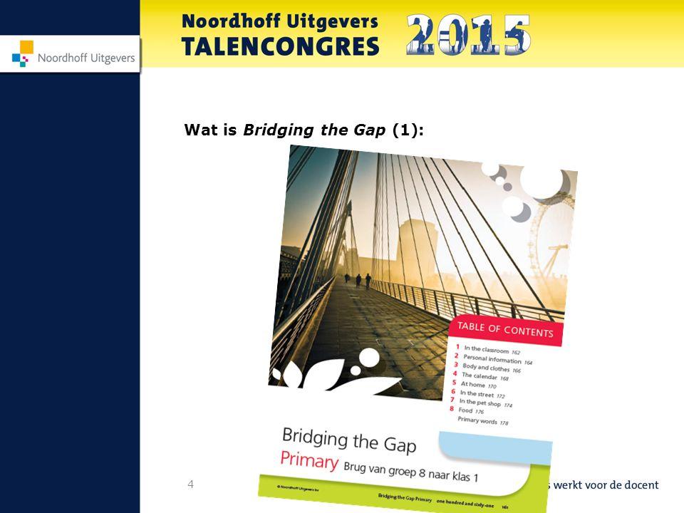 5 Wat is Bridging the Gap (2)