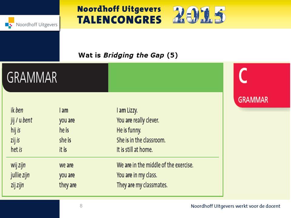 9 Wat is Bridging the Gap (6)