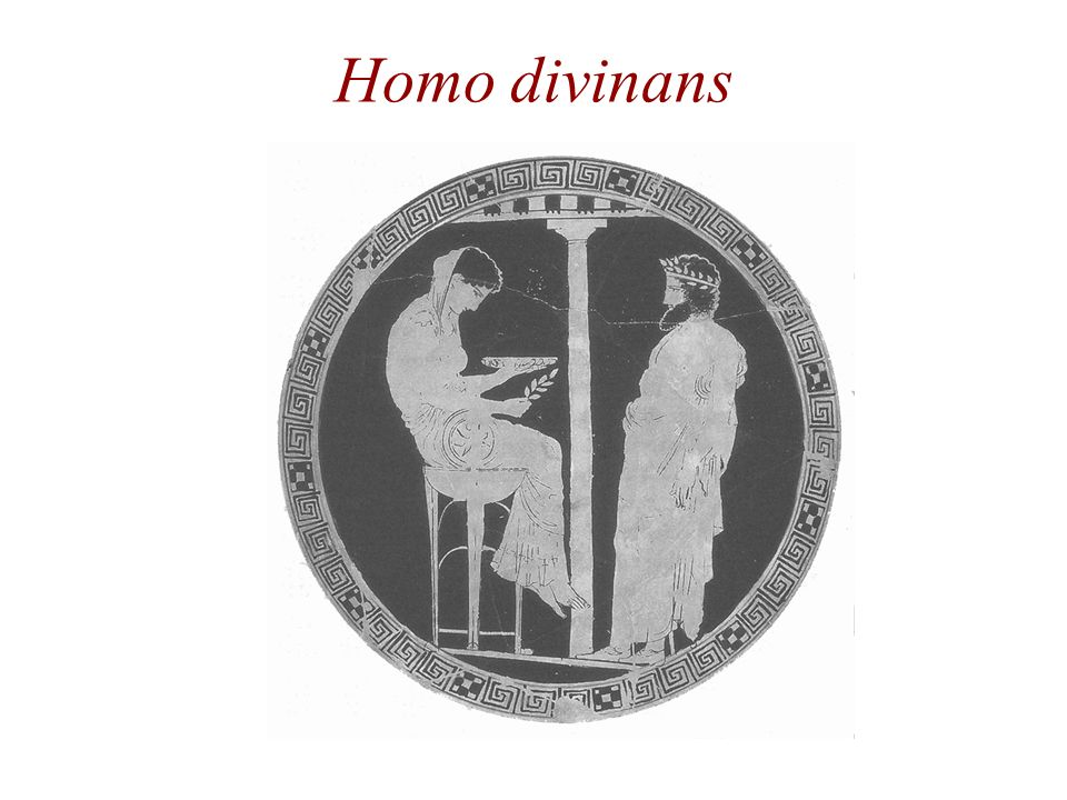 Homo divinans