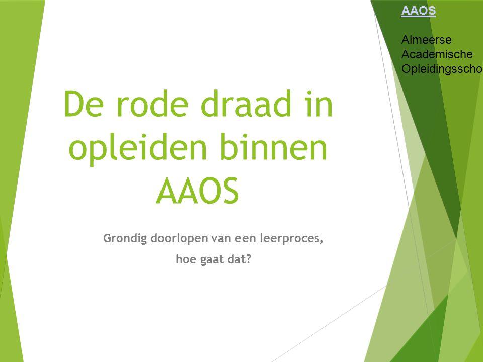Begeleidingsstructuur AAOS Almeerse Academische Opleidingsschool