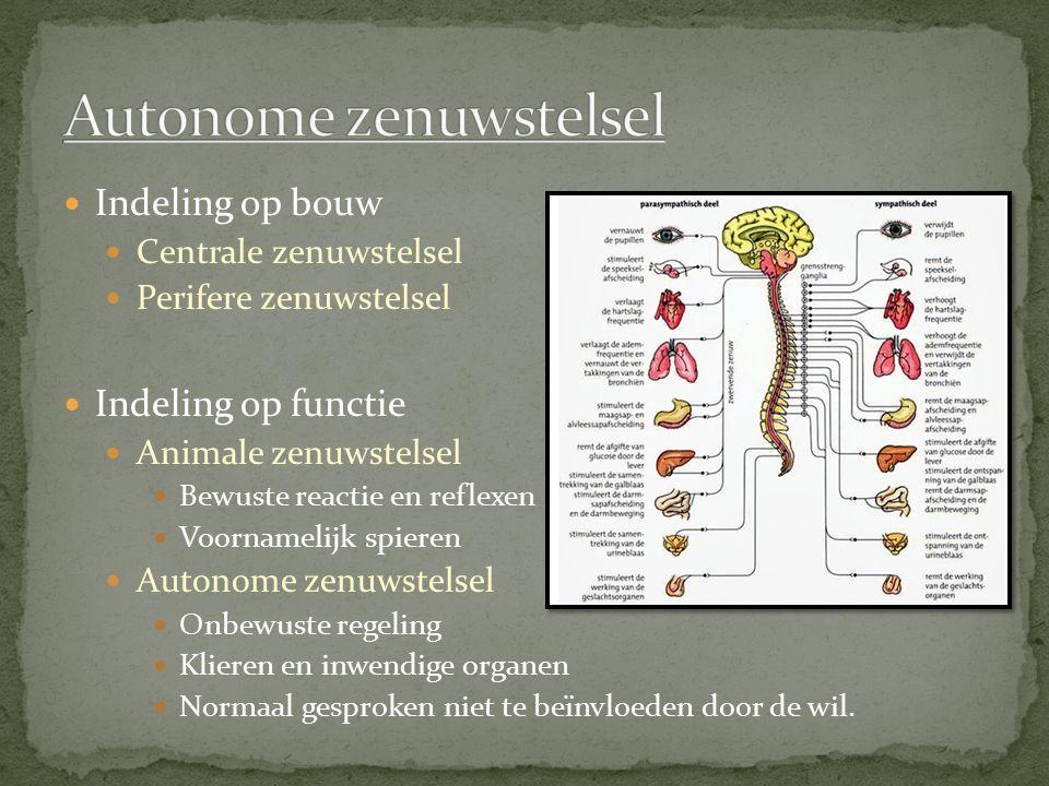 Indeling op bouw Centrale zenuwstelsel Perifere zenuwstelsel Indeling op functie Animale zenuwstelsel Bewuste reactie en reflexen Voornamelijk spieren