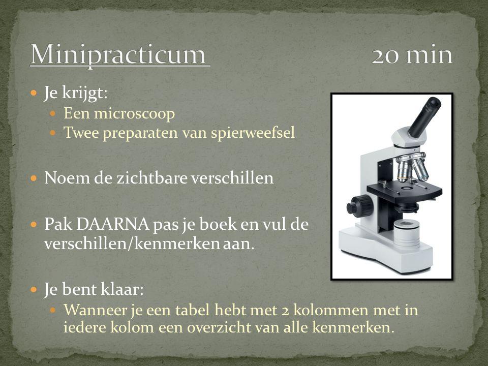 Je krijgt: Een microscoop Twee preparaten van spierweefsel Noem de zichtbare verschillen Pak DAARNA pas je boek en vul de verschillen/kenmerken aan. J