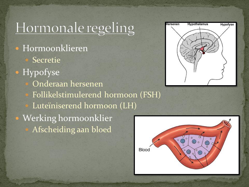 Hormoonklieren Secretie Hypofyse Onderaan hersenen Follikelstimulerend hormoon (FSH) Luteïniserend hormoon (LH) Werking hormoonklier Afscheiding aan bloed