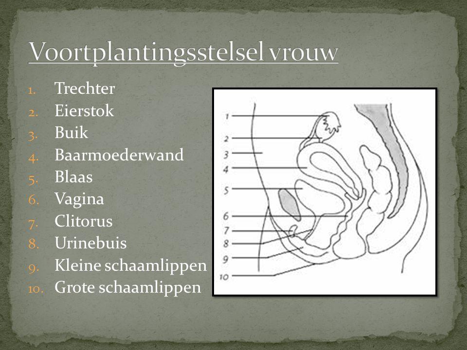 Opheffen van ongewenste kinderloosheid -Kunstmatige inseminatie: een arts brengt bij een vrouw sperma (donorsperma) in van een andere (onbekende) man.