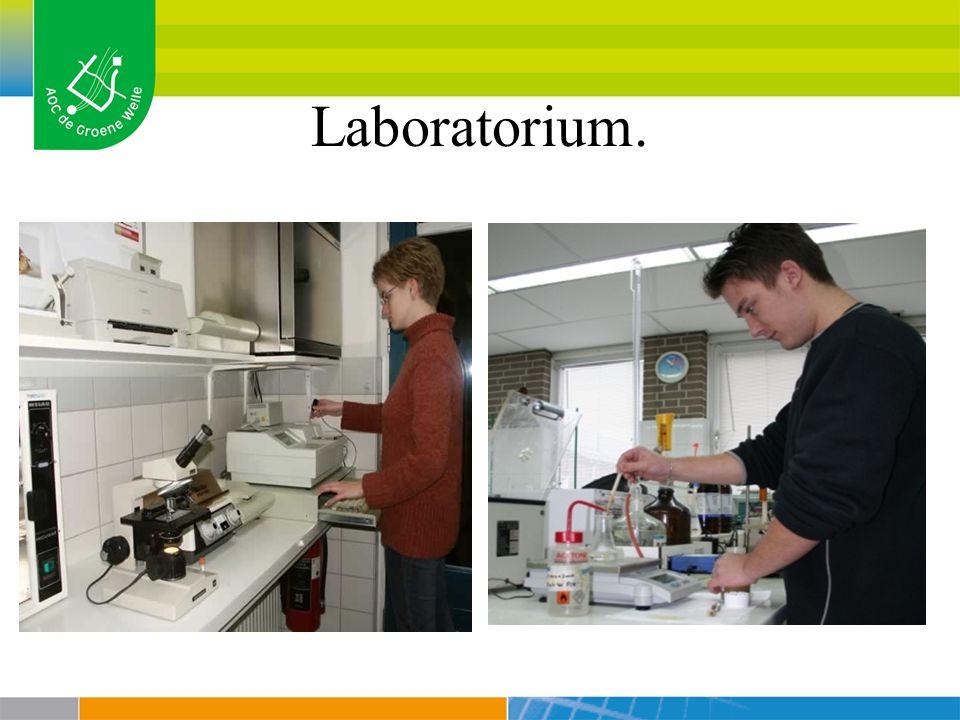 Interpretatie van de resultaten.2 categorieën : Gram- positieve bacteriën.