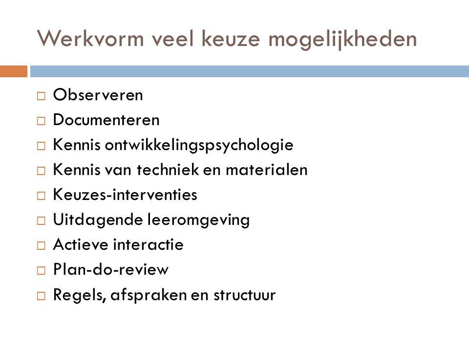 Werkvorm veel keuze mogelijkheden  Observeren  Documenteren  Kennis ontwikkelingspsychologie  Kennis van techniek en materialen  Keuzes-interventies  Uitdagende leeromgeving  Actieve interactie  Plan-do-review  Regels, afspraken en structuur