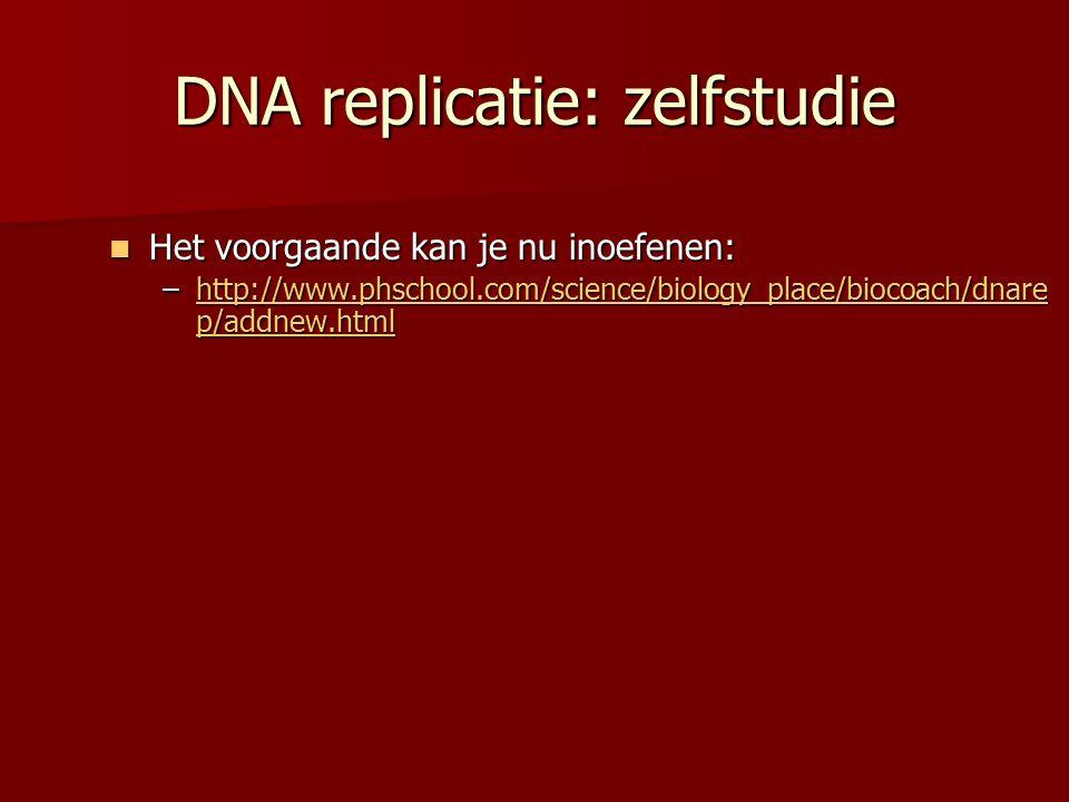 DNA replicatie: zelfstudie Het voorgaande kan je nu inoefenen: Het voorgaande kan je nu inoefenen: –http://www.phschool.com/science/biology_place/biocoach/dnare p/addnew.html http://www.phschool.com/science/biology_place/biocoach/dnare p/addnew.htmlhttp://www.phschool.com/science/biology_place/biocoach/dnare p/addnew.html