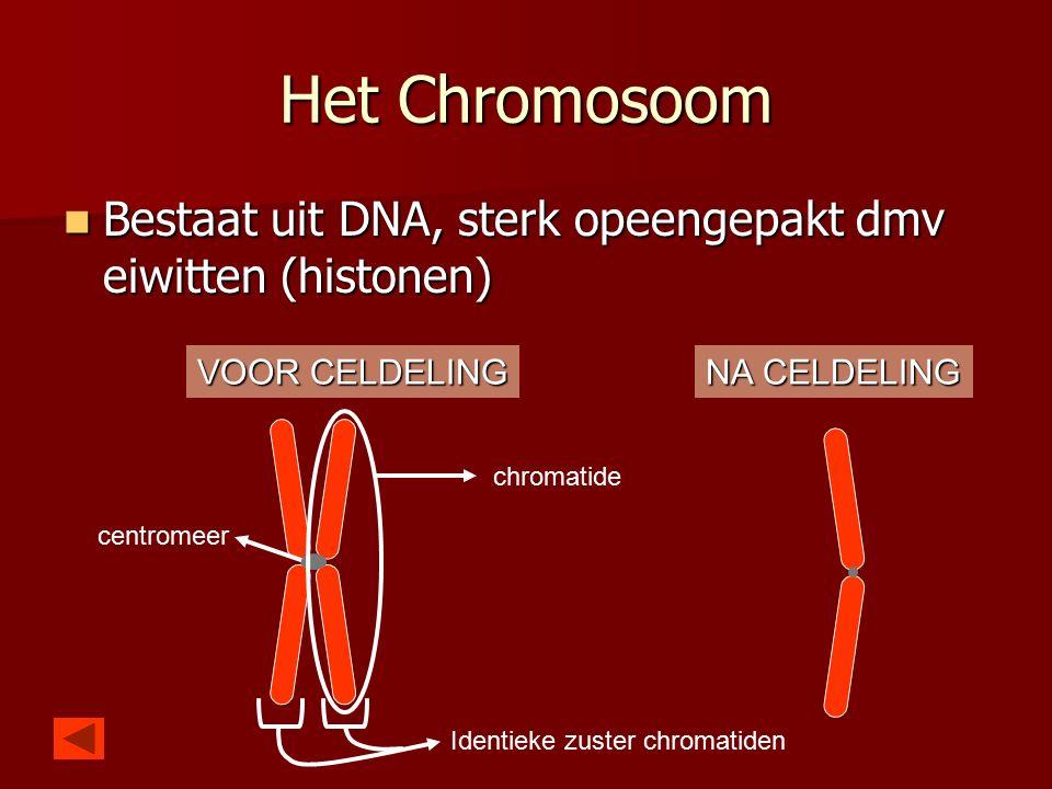 Het Chromosoom Bestaat uit DNA, sterk opeengepakt dmv eiwitten (histonen) Bestaat uit DNA, sterk opeengepakt dmv eiwitten (histonen) chromatide centromeer Identieke zuster chromatiden VOOR CELDELING NA CELDELING
