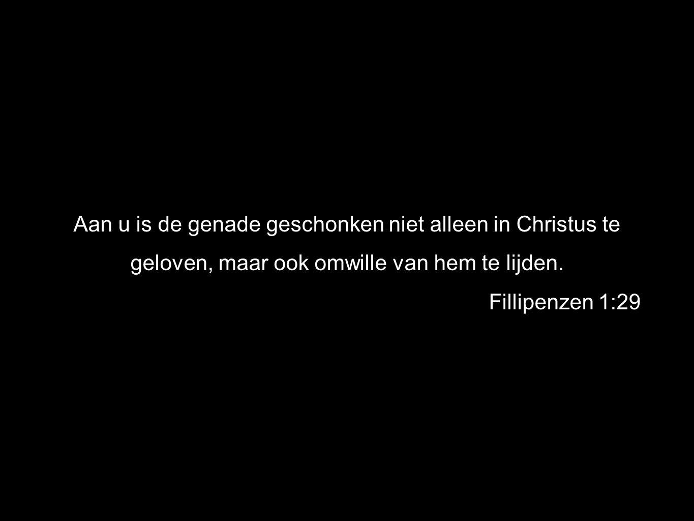 Aan u is de genade geschonken niet alleen in Christus te geloven, maar ook omwille van hem te lijden.