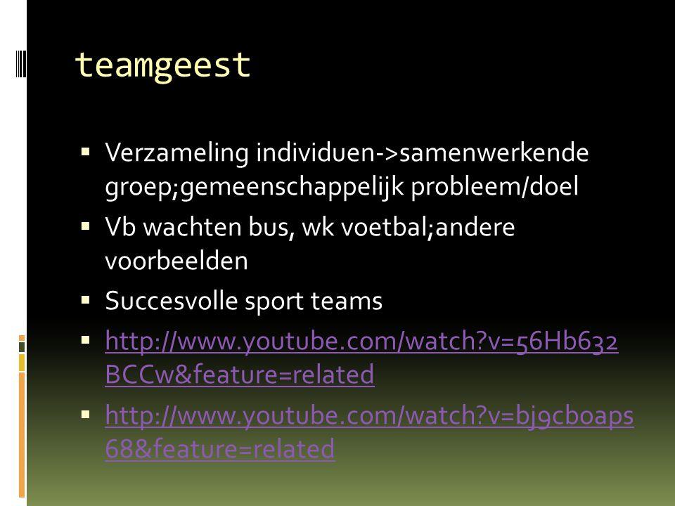 teamgeest  Verzameling individuen->samenwerkende groep;gemeenschappelijk probleem/doel  Vb wachten bus, wk voetbal;andere voorbeelden  Succesvolle