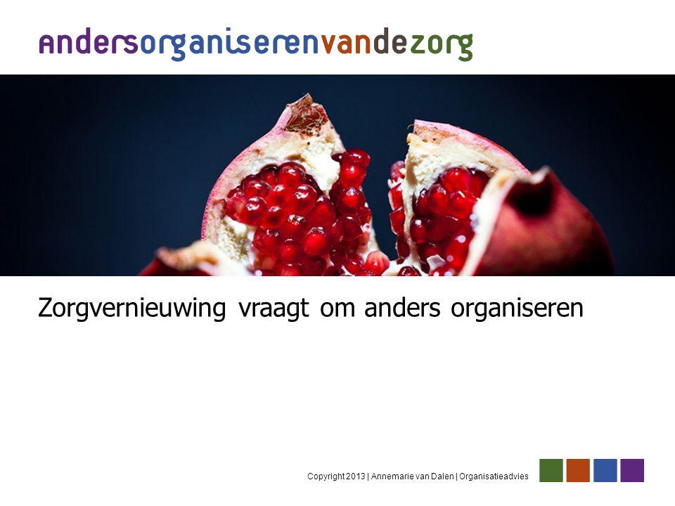 Copyright 2013 | Annemarie van Dalen | Organisatieadvies Zorgvernieuwing vraagt om anders organiseren