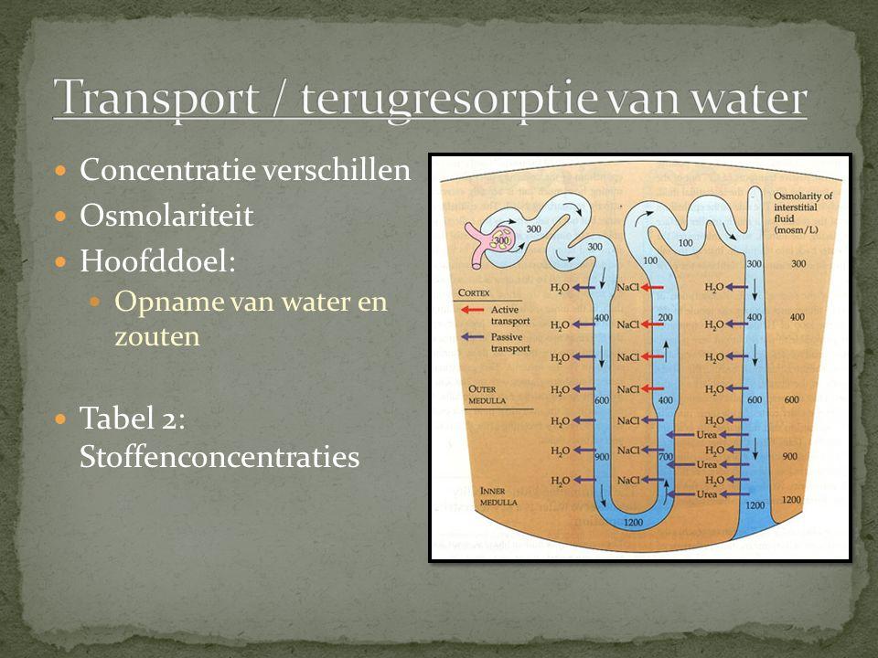 Concentratie verschillen Osmolariteit Hoofddoel: Opname van water en zouten Tabel 2: Stoffenconcentraties
