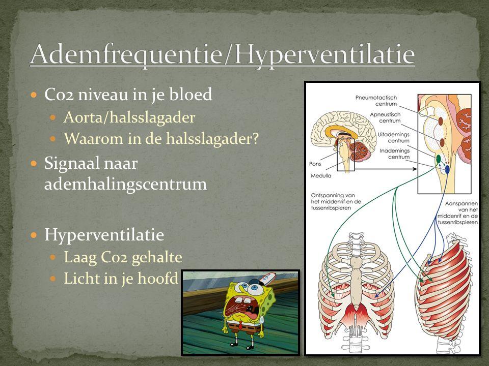 Co2 niveau in je bloed Aorta/halsslagader Waarom in de halsslagader.