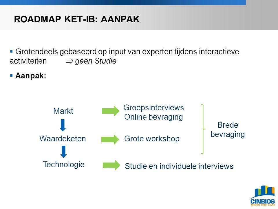  Grotendeels gebaseerd op input van experten tijdens interactieve activiteiten  geen Studie  Aanpak: Markt Waardeketen Technologie Groepsinterviews