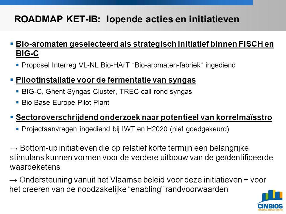  Bio-aromaten geselecteerd als strategisch initiatief binnen FISCH en BIG-C  Proposel Interreg VL-NL Bio-HArT Bio-aromaten-fabriek ingediend  Pilootinstallatie voor de fermentatie van syngas  BIG-C, Ghent Syngas Cluster, TREC call rond syngas  Bio Base Europe Pilot Plant  Sectoroverschrijdend onderzoek naar potentieel van korrelmaïsstro  Projectaanvragen ingediend bij IWT en H2020 (niet goedgekeurd) → Bottom-up initiatieven die op relatief korte termijn een belangrijke stimulans kunnen vormen voor de verdere uitbouw van de geïdentificeerde waardeketens → Ondersteuning vanuit het Vlaamse beleid voor deze initiatieven + voor het creëren van de noodzakelijke enabling randvoorwaarden ROADMAP KET-IB: lopende acties en initiatieven