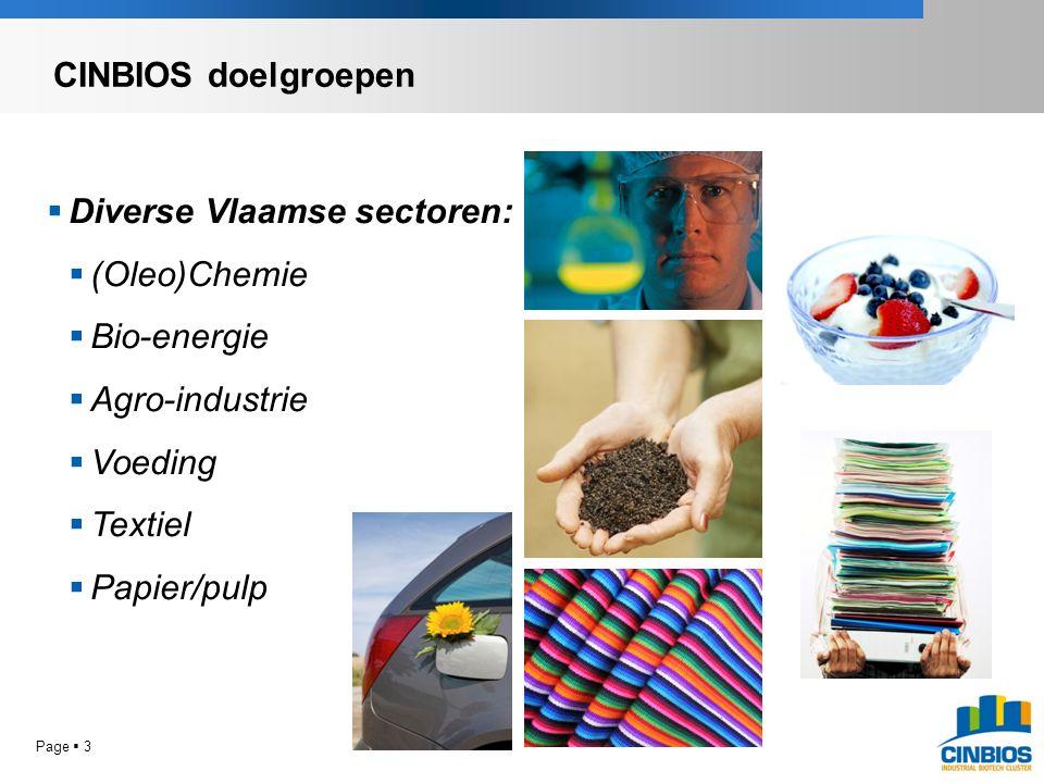  Diverse Vlaamse sectoren:  (Oleo)Chemie  Bio-energie  Agro-industrie  Voeding  Textiel  Papier/pulp CINBIOS doelgroepen Page  3