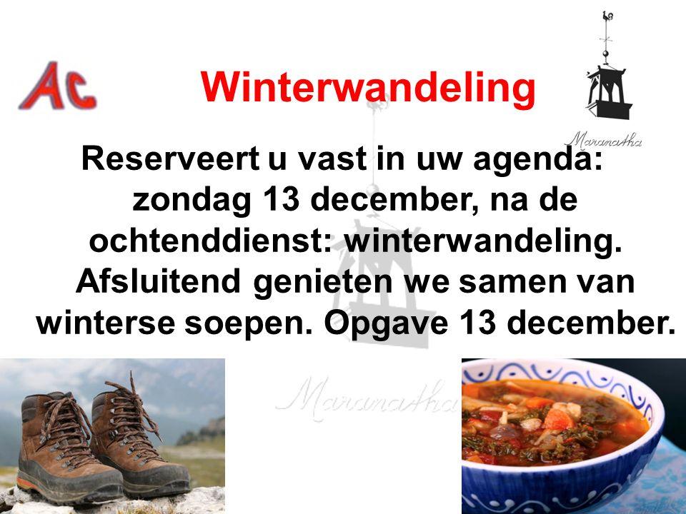 Winterwandeling Reserveert u vast in uw agenda: zondag 13 december, na de ochtenddienst: winterwandeling.